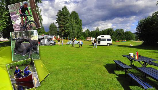 Moose-Park-Varmlands-Accommodation2